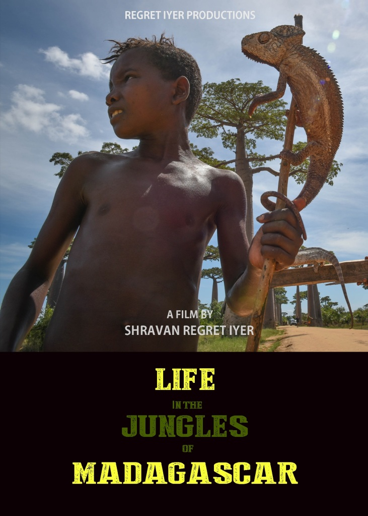 Life in the Jungles of Madagascar - Poster